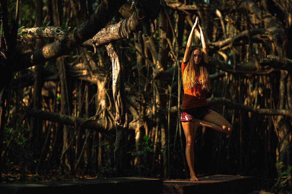 Йога практика Йога в Индия